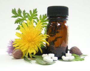 allergy_dandelion medicine